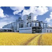 Проверки элеваторов призваны повысить качество зерна