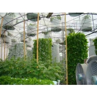 Вертикальные фермы: плюсы и минусы