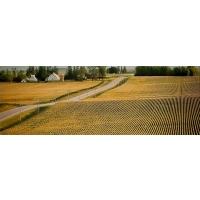 От чего зависит успех аграрного бизнеса