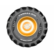 Шина 710/70R38 FARMAX R70 172А8/B TL (СЕАТ)