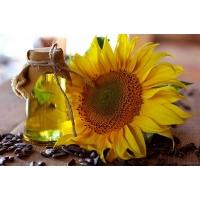 Подсолнечное масло «в упадке»