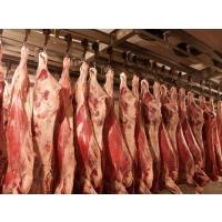 Экспорт украинского мяса вырос на 50%