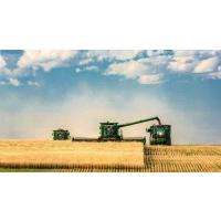Украинские аграрии уже собрали 23 млн тонн зерна