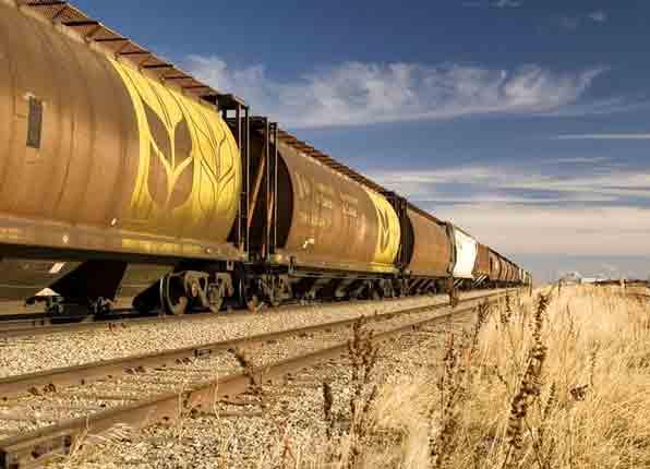 Растут перевозки зерна по железной дороге