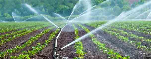 Орошаемые земли стабильные урожаи