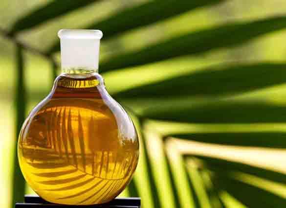 Украина увеличивает импорт пальмового масла
