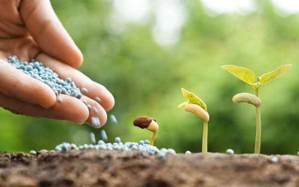 Аграрии обеспечены удобрениями только на треть