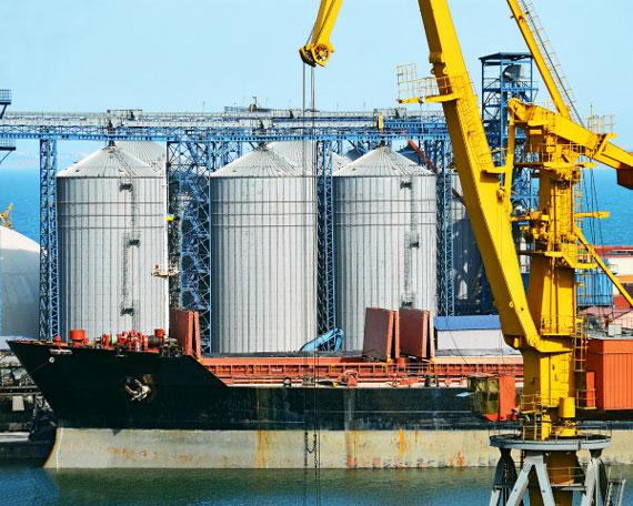Украина наращивает темпы экспорта зерновых