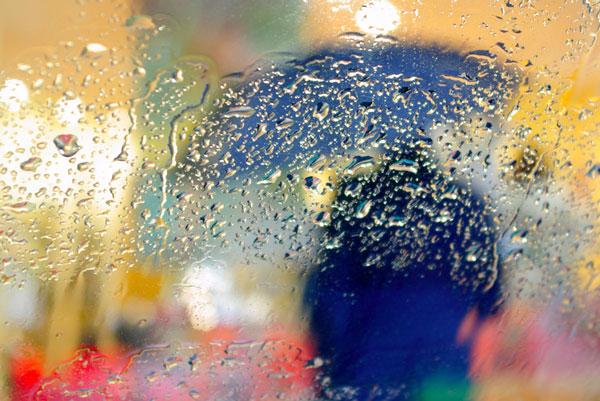 Погодные аномалии нарушают развитие озимых