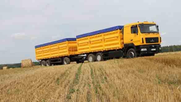 Темпы экспорта зерновых отстают от прошлогодних показателей