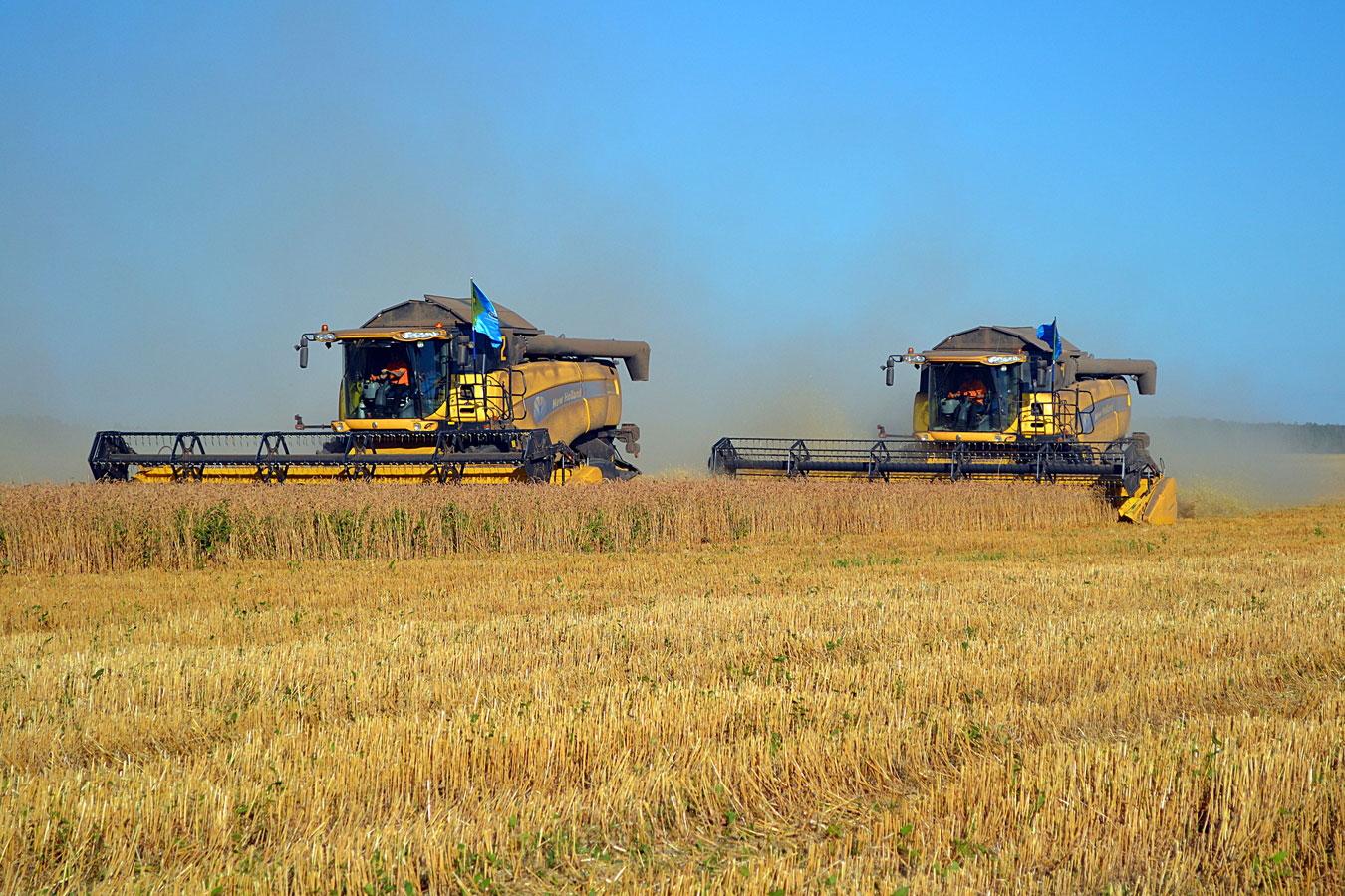 Отечественные аграрии добились рекордной урожайности