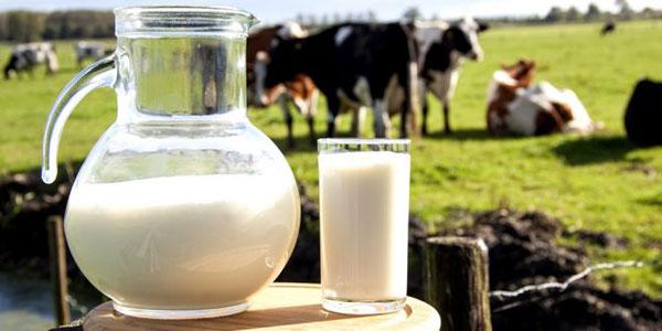 Фермерское молоко дорожает