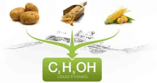 Растет экспорт сырья для биоэтанола